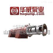熔盐泵生产厂家 山东华威 厂家直销 轴流泵