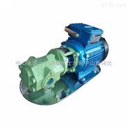 卧式单级皂液泵 直联式齿轮油泵