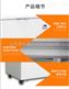 -65度深海名貴魚種保鮮專用超低溫儲存柜