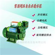 凌霄水泵0.75KW井水抽水小型鑄鐵自吸泵