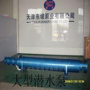 耐高溫熱水潛水泵