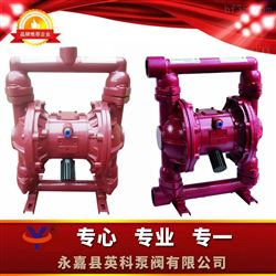 QBY3气动隔膜泵选英科