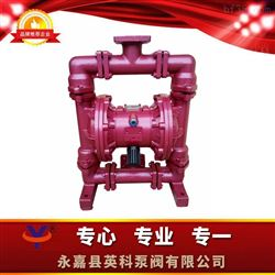 QBY衬胶气动隔膜泵