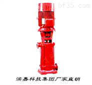 滨嘉科技集团XBD-DL型立式多级消防泵
