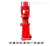 濱嘉科技集團XBD-DL型立式多級消防泵